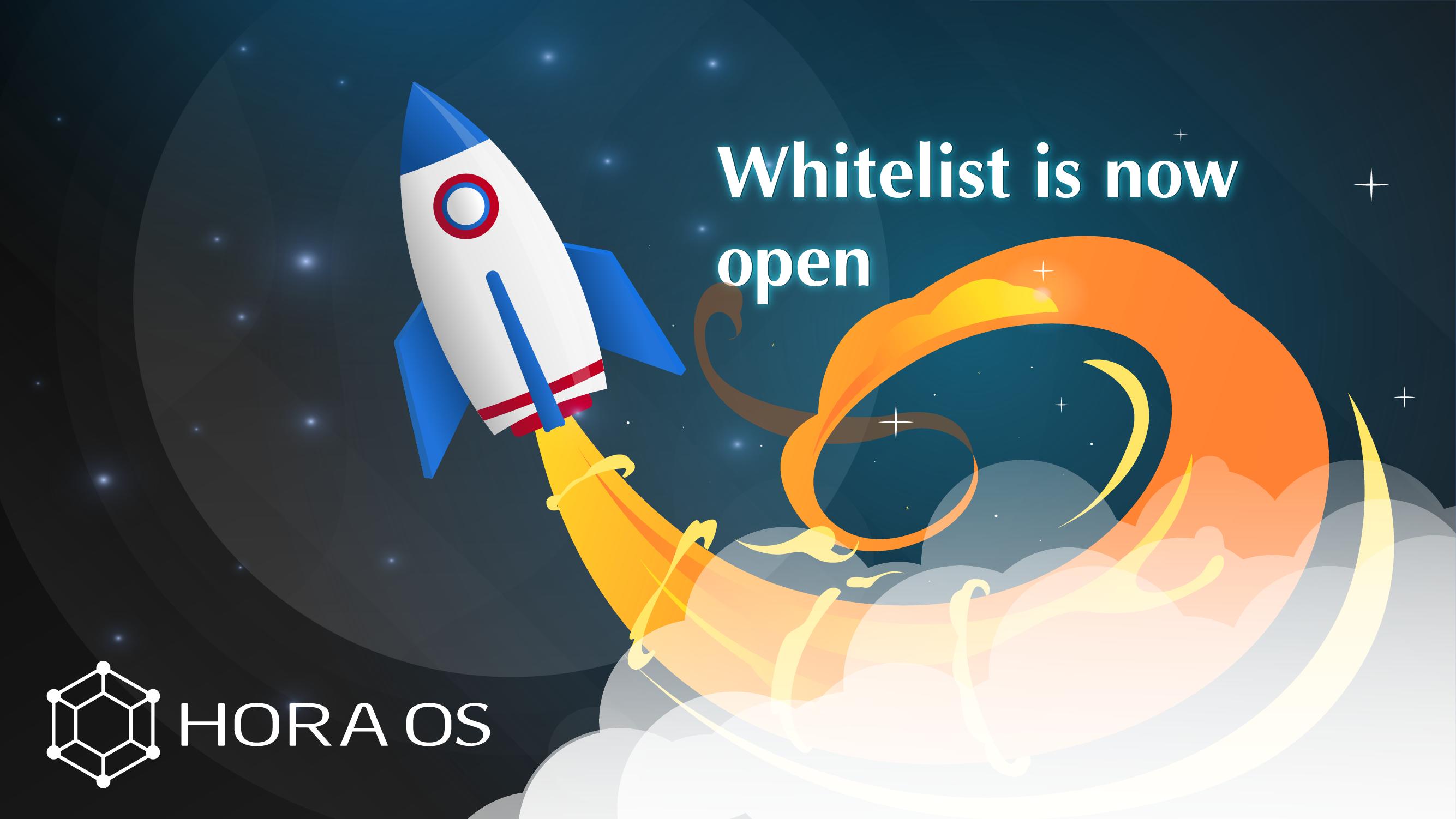 Organization Whitelist / Presale Information
